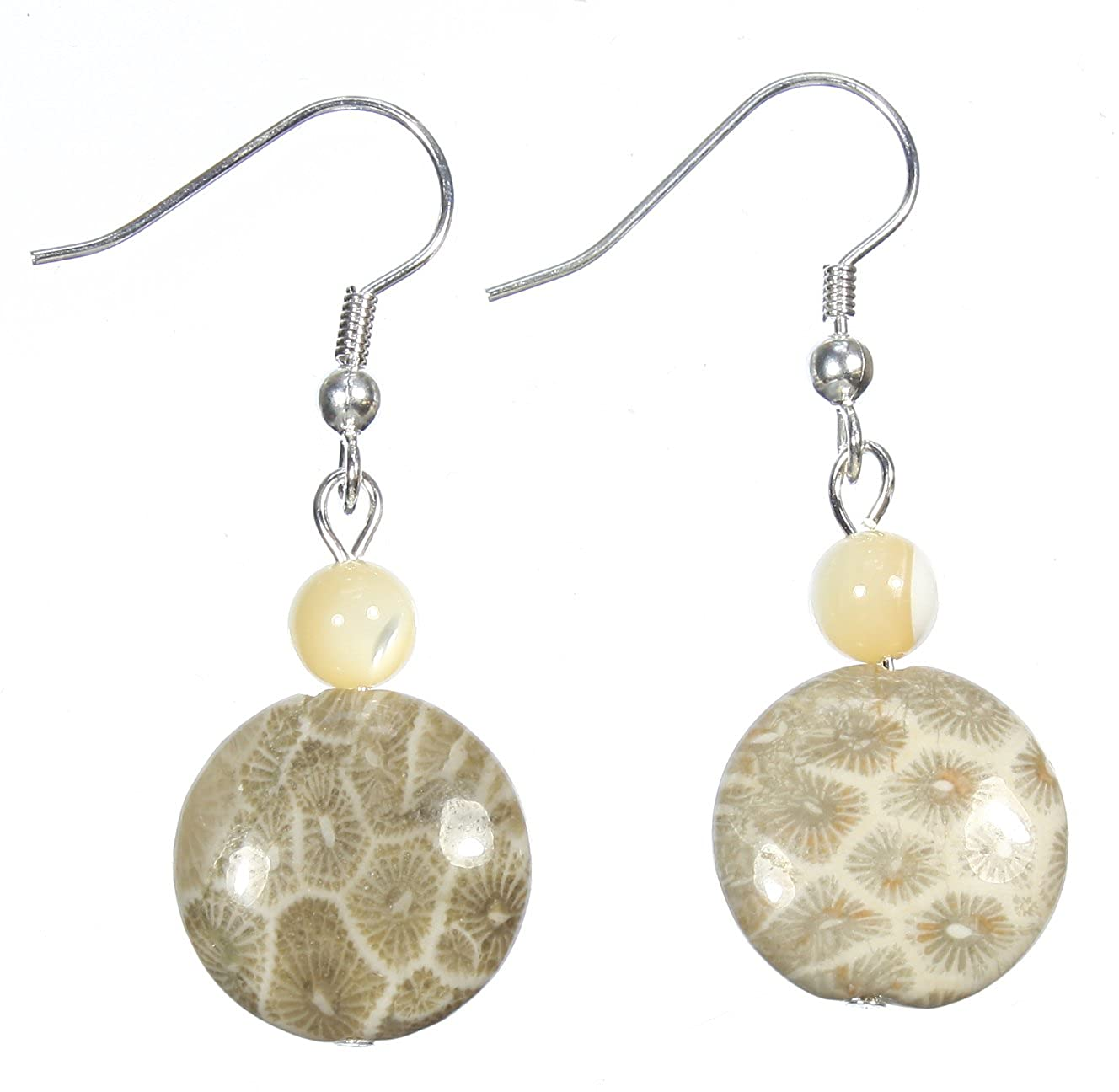 Amazon com: Style-ARThouse Ancient Sea Fossilized Coral Reef