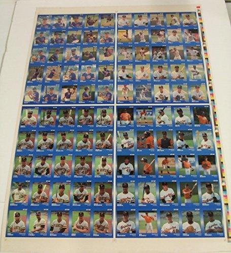 1989-star-glossy-uncut-minor-league-sheet-princeton-bluefield-bristol-sets-bv95