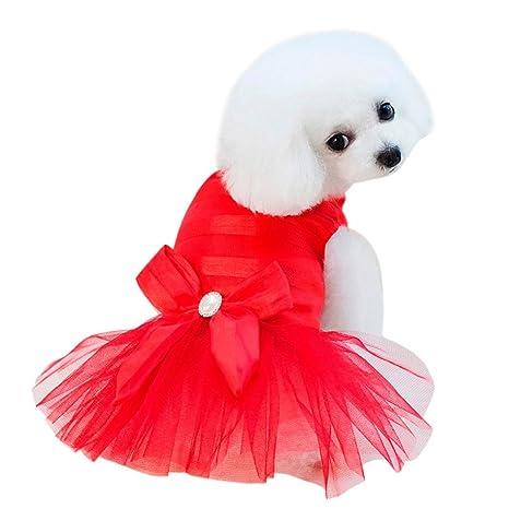 SunGren Vestido de perro pequeño, vestido de burbuja de perro de mascota de moda Gato de perro falda de verano linda para perros pequeños(M,Rojo)