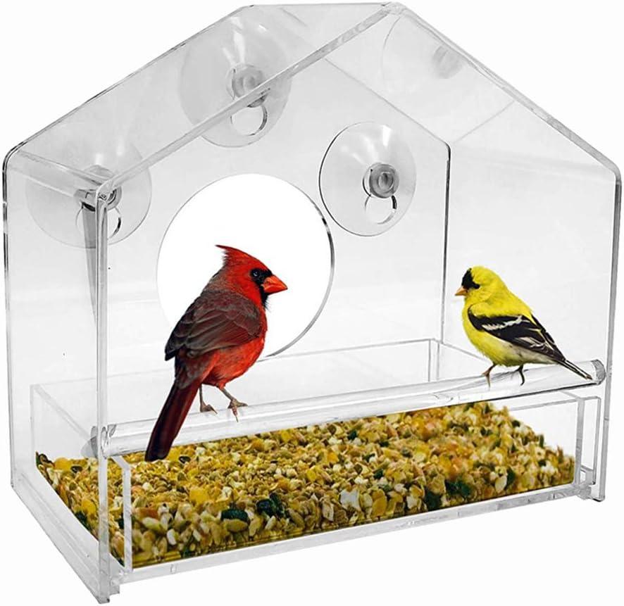 ARTOCT - Casita para pájaros con ventosas (acrílico)