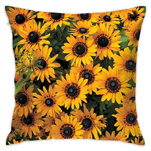- TRK-KWQDF Rudbeckia Denver Daisy Throw Pillows Covers for Couch/Bed 18 X 18 Inch, Print for Textile Wallpaper Pattern Home Sofa Cushion Cover Pillowcase Gift Bed Car Living Home