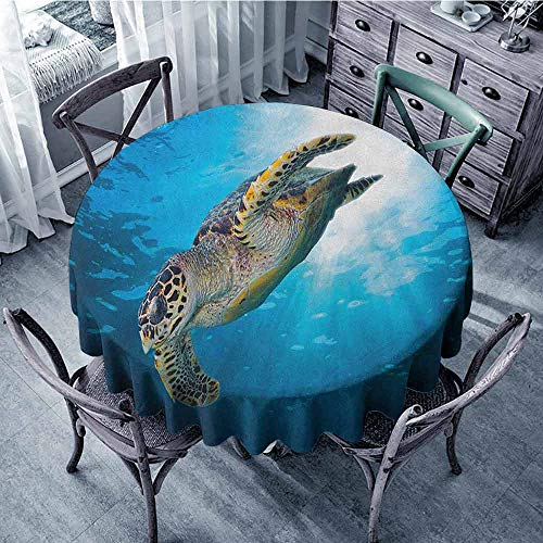 (ScottDecor Outdoors Round Tablecloth Jacquard Tablecloth Turtle,Hawksbill Sea Turtle Dive Deep Into The Blue Ocean Against Sun Rays, Yellow Brown Aqua Blue Diameter 36