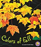 Colors of Fall (Colors All Around)