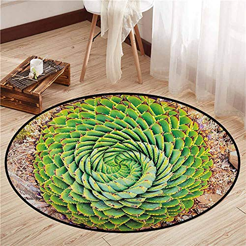Bedroom Round Rugs,Plant,National Flower of Lesotho South of Africa Aloe Polyphylla Spinning Spiral Aloe Vera,Sofa Coffee Table Mat,3'3