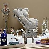 Design Toscano Aphrodite, Goddess of Love Torso Fragment Statue Review