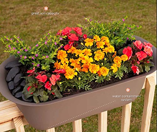 Bloem Modica Deck Rail Planter 12'' Amaranth by Bloem (Image #5)