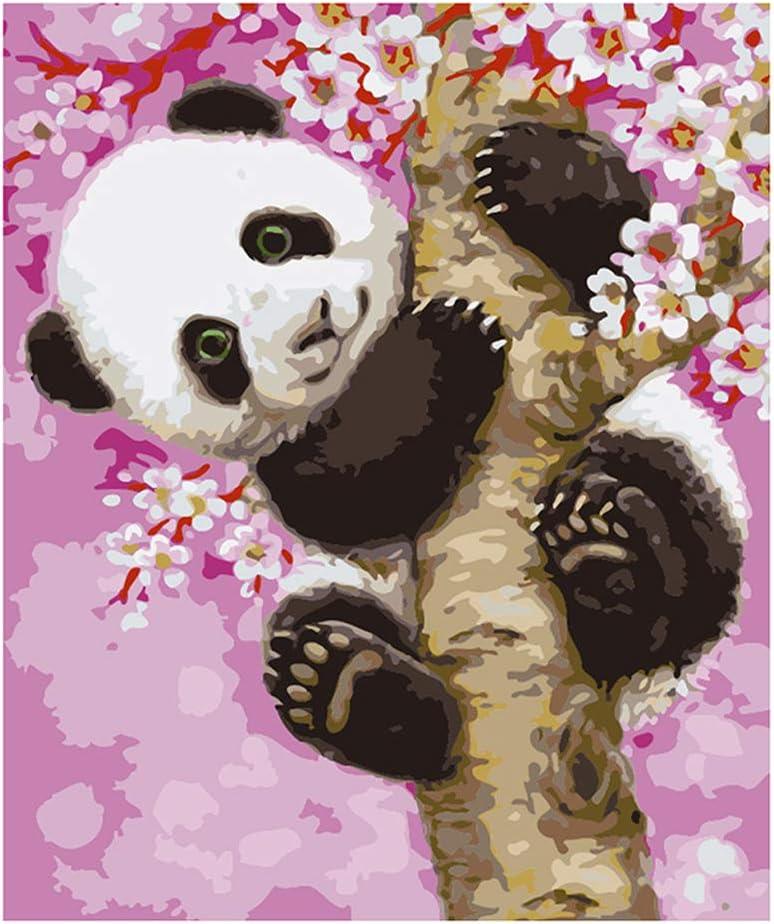 DIY Pintura al /óleo ECMQS DIY Pintar por n/úmeros para Adultos ni/ños Panda 40 x 50 cm Lino Lona Marco