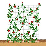 "Mr.Garden Metal Netting Trellis 24""x24""Single piece"
