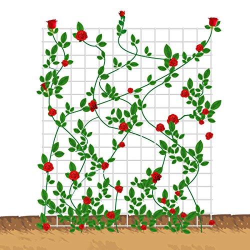 Mr.Garden Metal Netting Trellis 100cmx100cm single piece by Mr Garden