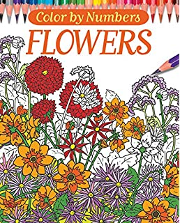 Creative Haven Floral Design Color by Number Coloring Book (Creative ...