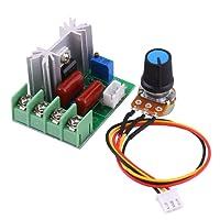 AC 50-220V 2000W SCR Regolatore di Tensione Elettrica del Modulo di Bordo Stabilizzatore di Tensione di Uscita Interruttore di Trasformatore Temperatura/Regolatore di Velocità del Motore Dimmer