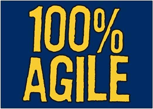 Teeburon 100 Agile Pack de Pegatinas x4: Amazon.es: Hogar