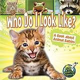 Who Do I Look Like?, Julie K. Lundgren, 1617419214