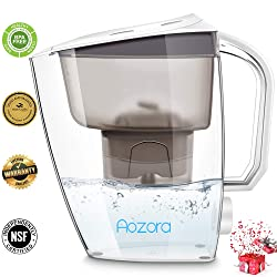 Aozora Large Water Filter Pitcher