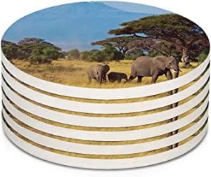 Safari 6 Pieces Ceramic Drink Coasters,Elephant Family in front of Kilimanjaro Mounts African Savannahs Wild Nature Scene Absorbent Stone Coaster Set,Housewarming Gift for Home Decor,Multicolor