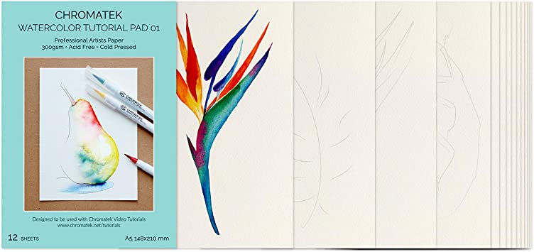 Watercolor Paper /& Video Tutorials 6 Illustrations x 2 Each. Cold Pressed 300gsm Tutorial Pad /& Video Tutorial Series for Beginners by Chromatek 12 Pages