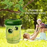 Fheaven (TM) 4 Pcs Wasp Trap Catcher Life Outdoor Solar Powered Trap Ultraviolet LED Fly Trap