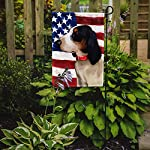 Caroline's Treasures CK6407GF Ariegeois Dog American Flag Flag Garden Size, Small, Multicolor 5