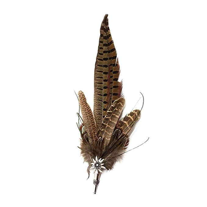 512841b17e6 Amazon.com  Brown Pheasant Feathers for German Oktoberfest Hunter ...