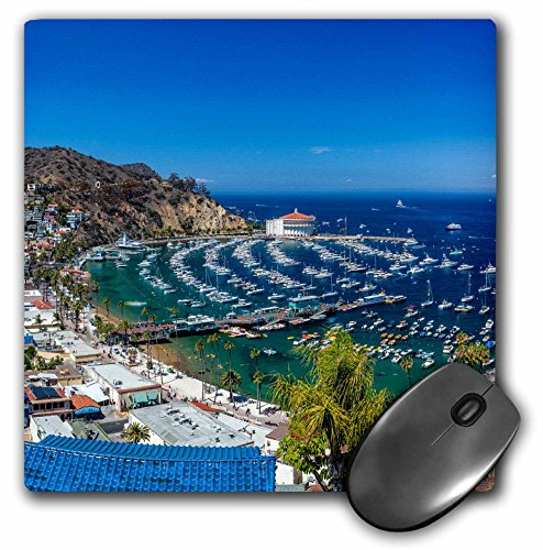 (3dRose A Panorama of Avalon on Catalina Island  - Mouse Pad, 8 by 8 inches (mp_205863_1))