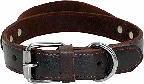 PET ARTIST Genuine Leather Dog Collar