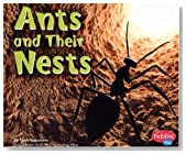 Ants and Their Nests (Animal Homes)