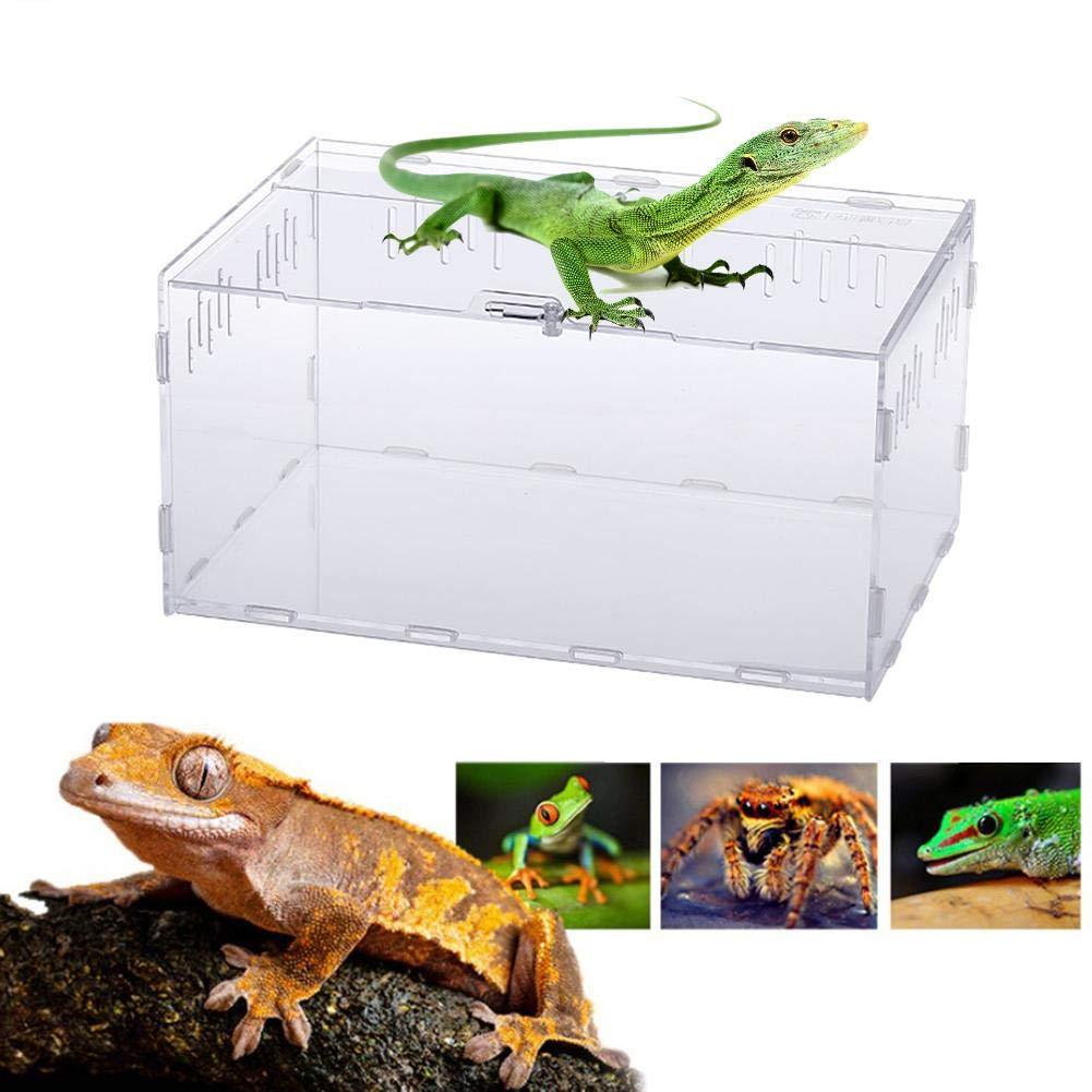 Navigatee Reptil Caja De Cría, De Acrílico Transparente Para ...