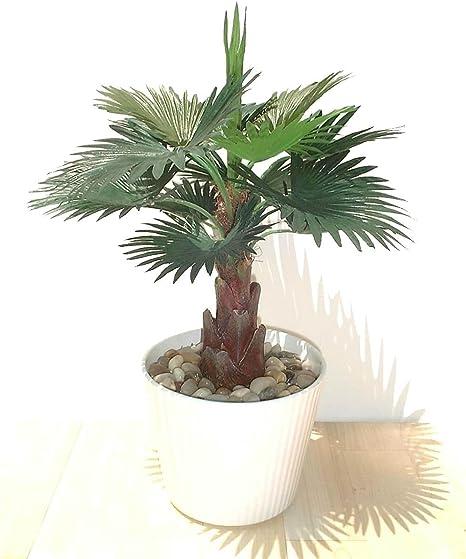 Ventilador Palma (33cm) - Planta Artificial SIN MACETA: Amazon.es ...