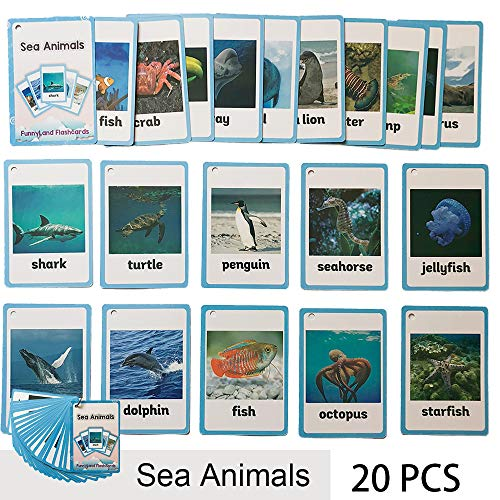 (Richardy 20PCS/Set Sea Animals Kids Gifts English Flash Cards Pocket Card Educational Learning Baby Toys For Children Pre-Kindergarten)