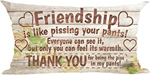 ramirar Friendship is Like Pissing Your Pants Retro Brown Wood Background Decorative Lumbar Throw Pillow Cover Case Cushion Home Living Room Bed Sofa Car Cotton Linen Rectangular 12 x 20 Inches