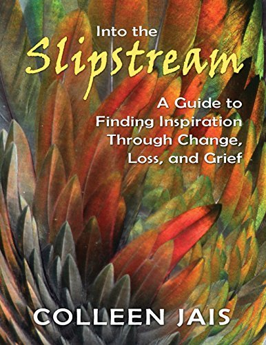Into the Slipstream: A Guide to Finding Inspiration Through Change, Loss, and Grief by Colleen Jais (2014-11-01)