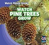 Watch Pine Trees Grow, Therese Shea, 1433948400