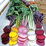 buy Park Seed Rainbow Mix Beet Seeds now, new 2018-2017 bestseller, review and Photo, best price $5.95