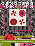 quilting books using panels - Quilted Panels in Black and White: Fast and Friendly Techniques for Using Fabric Panels and Large Prints