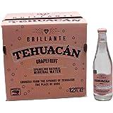 Tehuacan Brillante Agua Mineral Platino Sabor Toronja 0.355 L Caja Con 12 Pzas