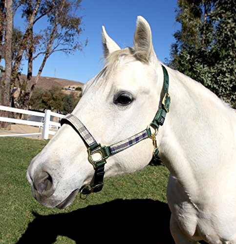 Kensington Premium Breakaway Halter with Padded Nose - Added Breakaway Safety Measures - Snap at Throat for Identical Fit Each Time (Deluxe Hunter, - Halter Deluxe Breakaway