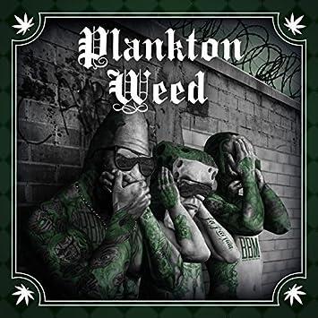 planktonweed
