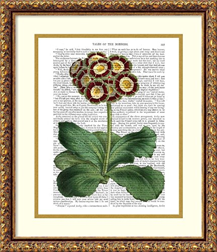 Framed Art Print 'Primula Auricula Red' by Fab Funky