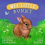 Wee Little Bunny, Lauren Thompson, 1416979379