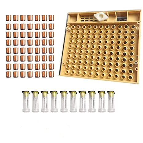 Complete Queen Rearing Cupkit System Bee Beekeeping Catcher Box /& 100 Cups Cell