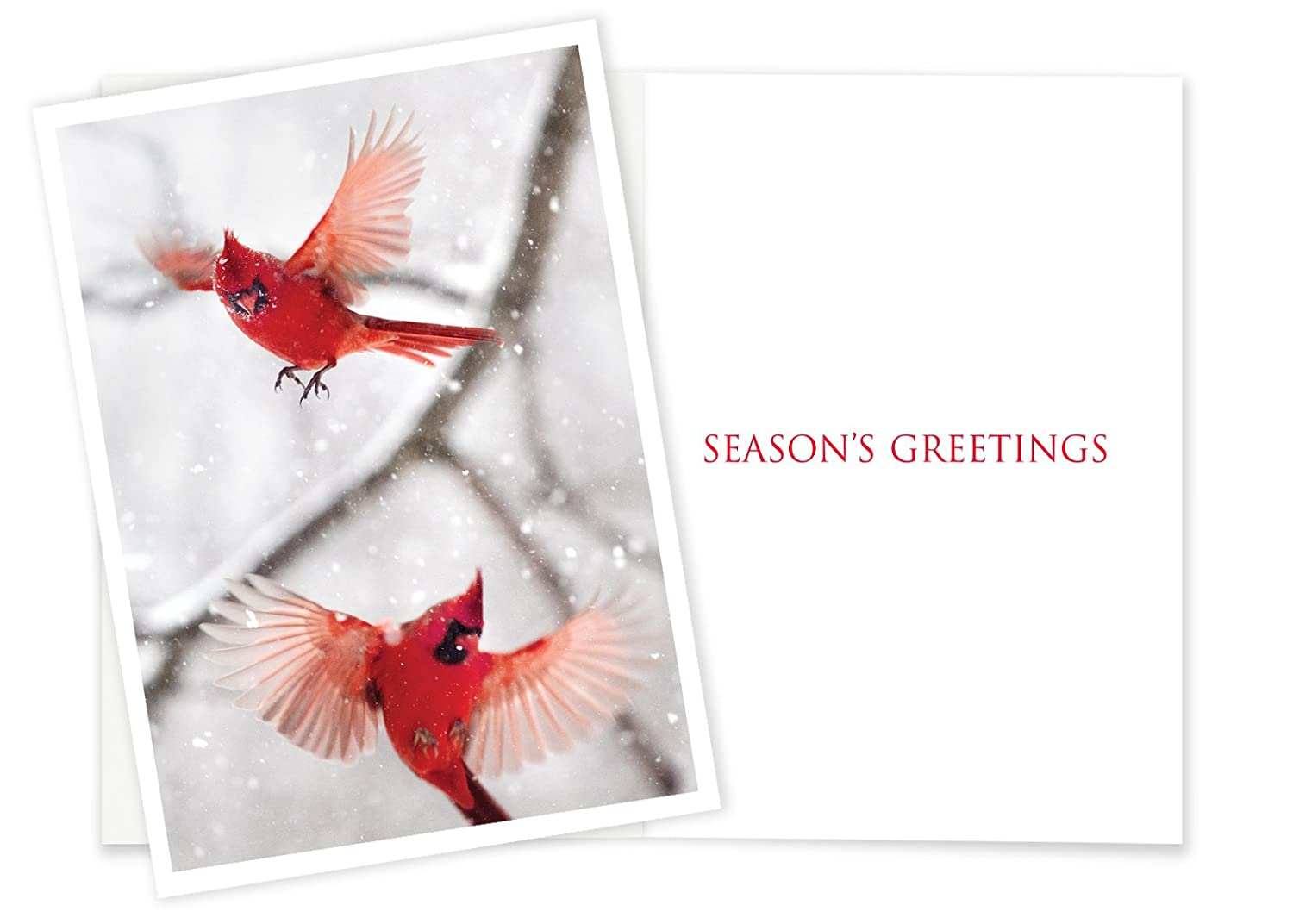 Amazon 12 Cardinals In Flight Christmas Cards With Envelopes