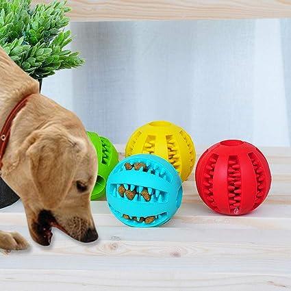 Sansee - Dispensador de Comida para Mascotas, Juguete para Masticar y Perro, Bola Resistente
