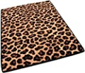 Indoor Cut Pile Leopold Leopard Print Area Rug for Home with Premium BOUND Polyester Edges.