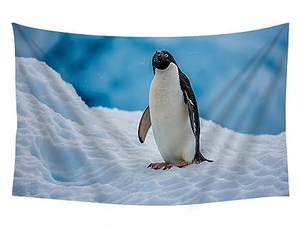 Amazon.com: PUPBEAMO PRINTS Antarctic Continent Penguin - Wall ...