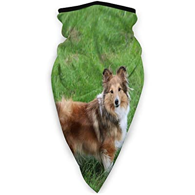 Love Animal Border Collie Sheltie Dog Shetland Shepherd Dog Half Face Mask Balaclava Women Men Ski Mask Bandana for Cycling : Sports & Outdoors