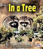 In a Tree, Jennifer Boothroyd, 0822556634