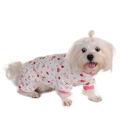 Awhao Pijamas de perros Ropa para mascotas Para prevenir enfermedades de la piel