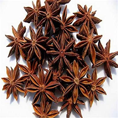 Star Anise Seeds, 20Pcs Star Anise Seeds Medicinal Aromatics Cooking Spice Garden Farm Yard Plant - Star Anise Seeds : Garden & Outdoor