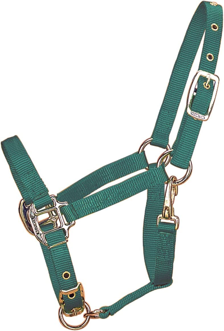 Hamilton 3//4-Inch Adjustable Chin Foal Halter with Snap