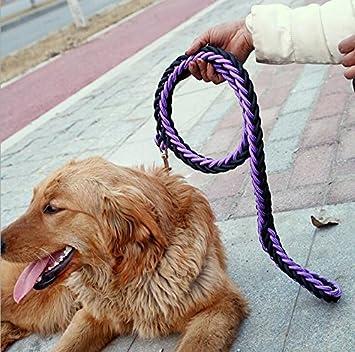 Maycong Sin arnés de jalar Collar de Cuerdas para Perro de Cuerda ...